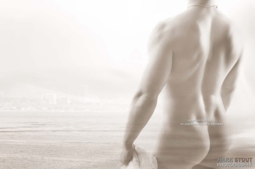 fine art male nude