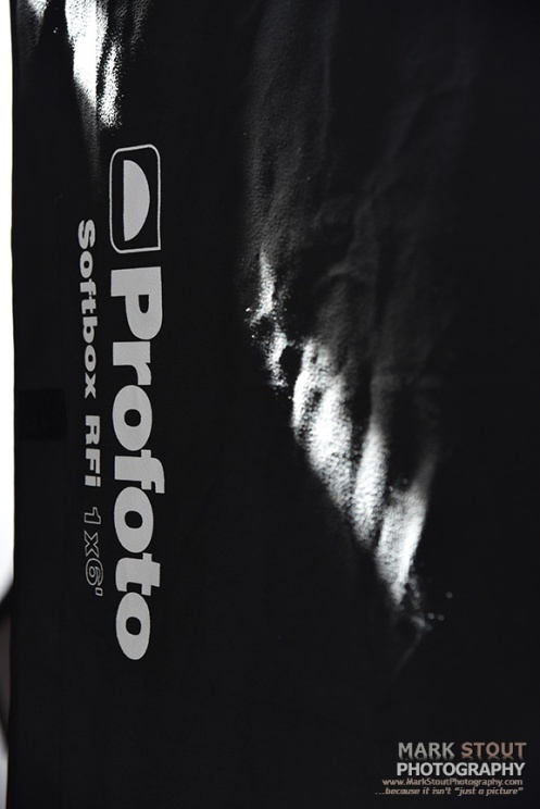 Profoto strip box